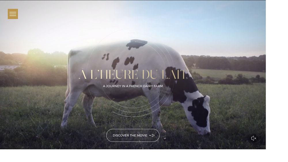 À l'heure du lait — Homepage