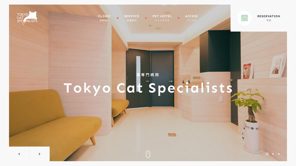 Tokyo Cat Specialists   猫の専門病院