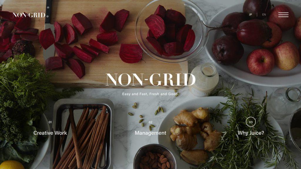 NON-GRID INC.